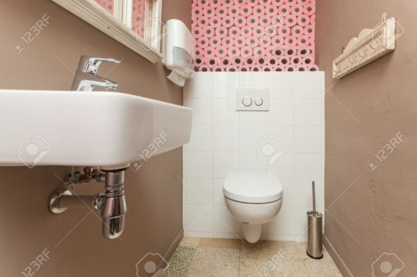 Awesome Small Toilet Room Containing A Toilet And A Sink With Pink Toilet Images Of Small Toilet Rooms