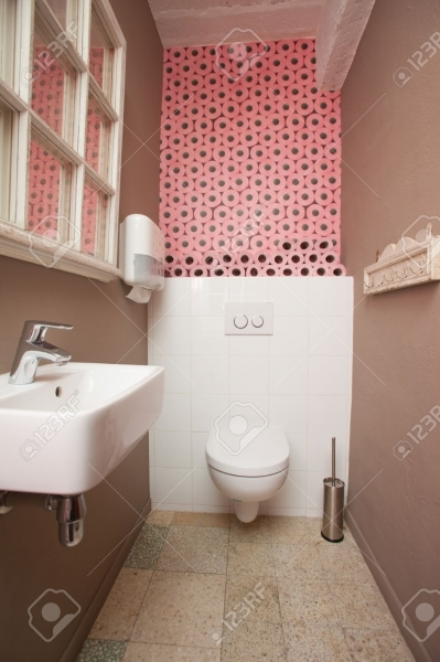 Delightful Small Toilet Room Containing A Toilet And A Sink With Pink Toilet Images Of Small Toilet Rooms
