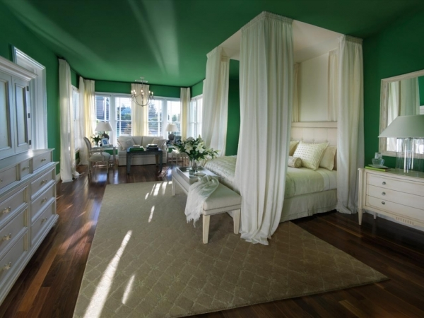 Fascinating Photos Hgtv Small Master Bedroom In Forest Green