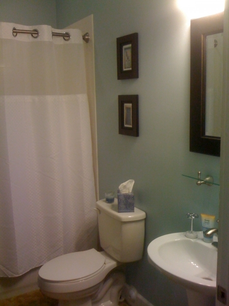 Gorgeous Bathroom Paint Color Ideas With Pale Blue Wall And Dark Brown Wall Dark Paint Color In Small Bathroom
