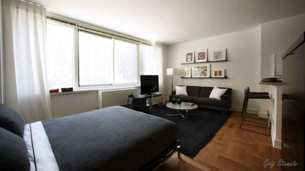 Outstanding Decorating Studio Apartments 166 Small Studio Apartment Decorating Ideas