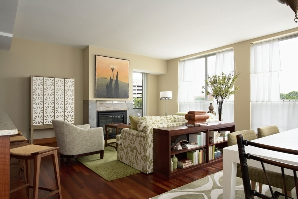 Image of Furniture Deluxe Interior Design Decorating Ideas For Small Small Living Room Dining Room Decor