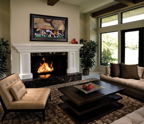 Amazing Apartment Living Room Designs Apartment Fire Places For Small Town Houses