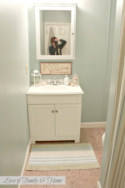 Beautiful Evolution Of Our Hallway Bathroom Current Plans Amp I Need Your Small Bathrooms With No Windows