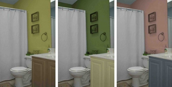 Delightful Colors For Small Bathrooms With No Windows Tumasite Small Bathrooms With No Windows