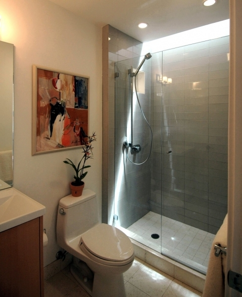 Picture of Bathroom Nice Shower For Small Bathroom Design Ideas Also Chic Nice Small Bathroom With Shower