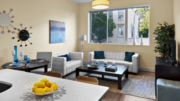 Remarkable Small Urban Apartment Ideas Small Living Room Dining Room Decor